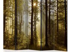 Paraván - Forest: Morning Sunlight  II [Room Dividers]